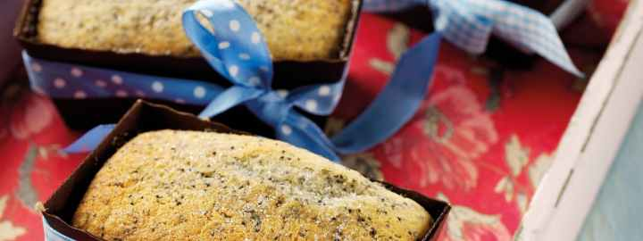 Lemon and poppy seed cakes