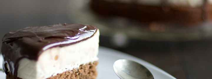 Chocolate, hazelnut and Baileys ice cream cake